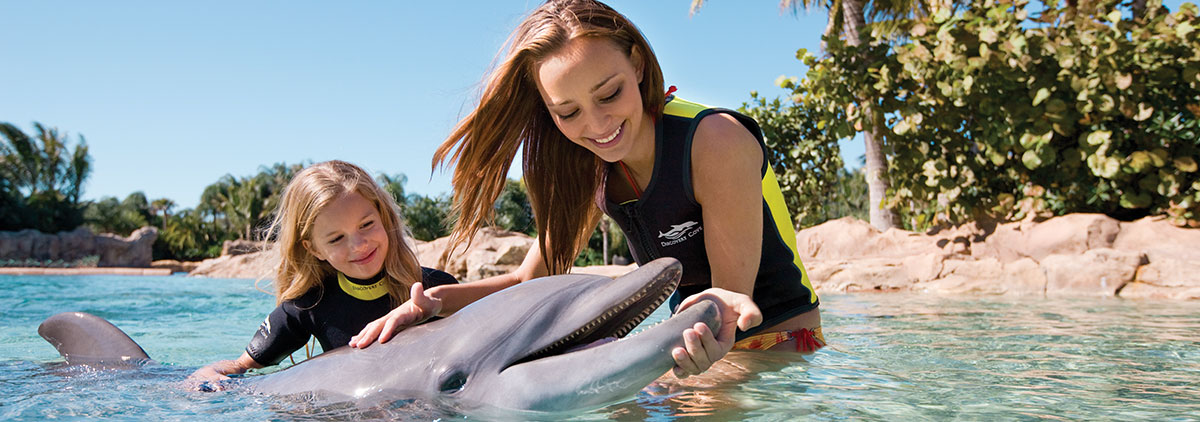 SeaWorld Orlando is a theme park and marine zoological park