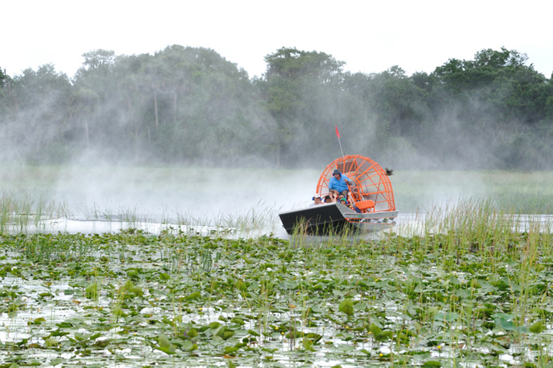Enjoy One Of The Best Airboat Tours In Kissimmee Florida